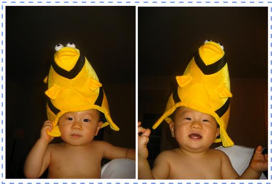 Fish_hat